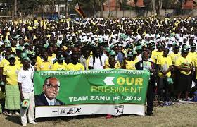 Zim elections in colour