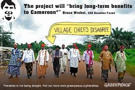 Local chiefs protest against project